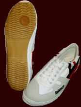 Champion Shoes (Spintech)