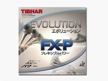 Evolution FX-P (Tibhar)